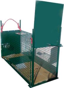 comment nous aider les chats libres de chamb ry. Black Bedroom Furniture Sets. Home Design Ideas
